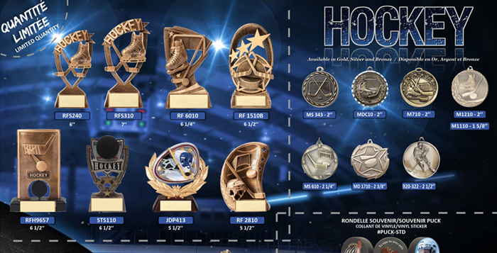 https://discounttrophy.ca/wp-content/uploads/2019/11/Hockey-700x357-1-700x357.png